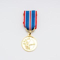 NAIS Miniatyr Gullmedalje