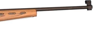 Pipe Sauer 670/19 .22LR
